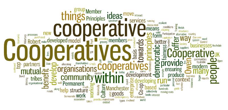 Organization Project Evaluation